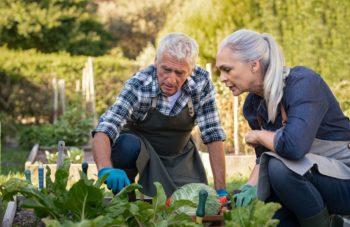 Activité Jardinage Senior