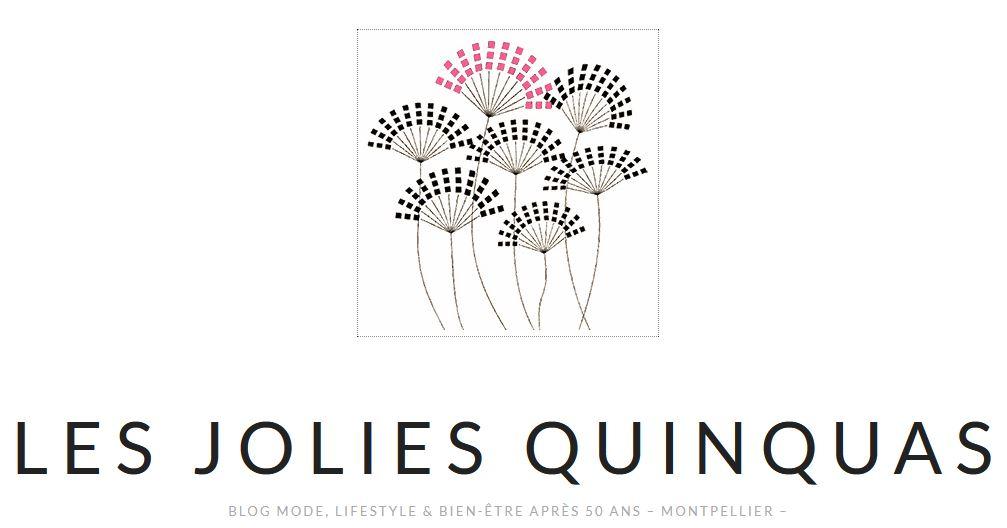 logo Lesjoliesquinquas. Com