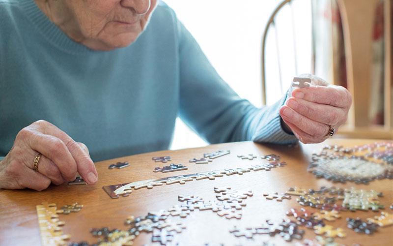 Puzzle Stimuler Cerveau